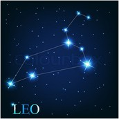 Some More Facts About Leo