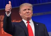 Donald Trump's Story