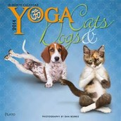 yoga classes are incuded