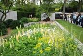 Ide-trädgård på Chelsea flower show