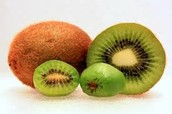 All About Kiwis