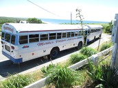 With limited cars on the islands people need to ride busses.