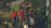 Dinosaur Exhibit Field Trip
