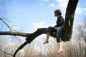 Me fascinaba trepar a los árboles porque era callada