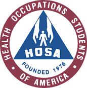 Profesional Organization