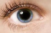 Big pupil