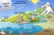 The process of global warming