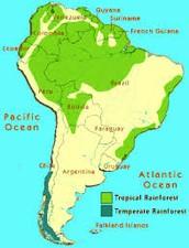 Location of the Amazon Rainforest: