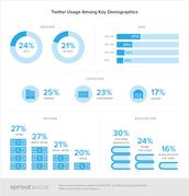 Twitter Age Demographics