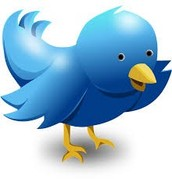 SIGNED UP FOR TWITTER YET?