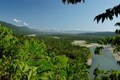 Visitar el Parque Nacional del Manu