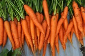 Carrots to Eat