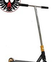Phoenix Scooter (50% Sale!)