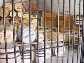Barrels of Salt and Vinegar