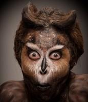 Monkey (Animal 1)