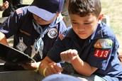 Cub Scout News