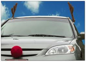Rudolf Costume for your Car 3.99!