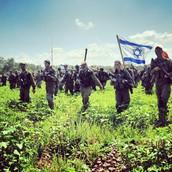 הישגי צבא הגנה לישראל.