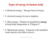 Energy Forms Used in The Body