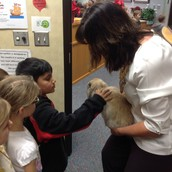 We LOVED visiting them in Mrs. Curran's office!