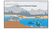 BOD- Biochemical Oxygen Demand