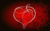 Los sentimientos, en especial, el amor