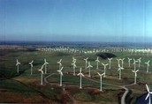 Field of wind turbines.