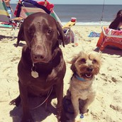 Charlie and Luke at the beach