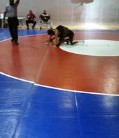 Jr. Varsity Wrestling Tournament - Go Avyon!