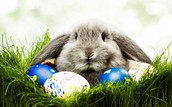 How did the Easter Bunny Originate?