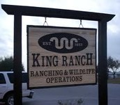 Why is King Ranch important?