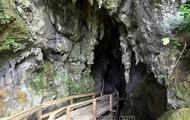 Glow Worm Cave.