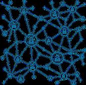 Consolida tu red de usuarios