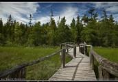 The Ridges Sanctuary INC