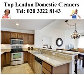 Why do you need to use Domestic Cleaners London?