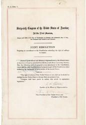 nineteenth amendment