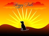Happy tails = Happy Masters