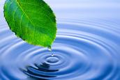 Environmental Aspect