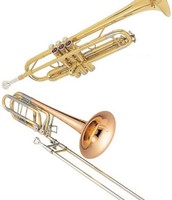 Exploring Brass Instruments