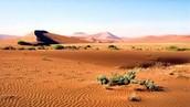 Desierto.