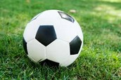 The soccer ball is like the cilia & flagella