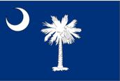 Colonial flag of South Carolina
