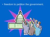 Freedom to Petition the Government