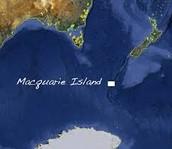 Location Of Macquarie Island