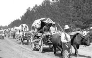 Pioneers traveld in a long line called a wagon train.