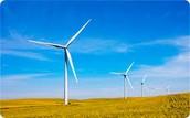 Renewable Resources: