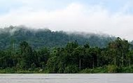 River Mamberamo