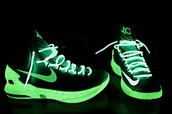 Introducing the new Spotlight Kds