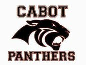 Panther Spirit Day on Fridays!