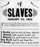 Slaves for Sale!!